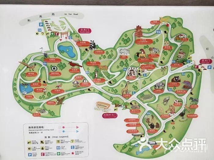 红山森林动物园图片-北京动物园-大众点评网