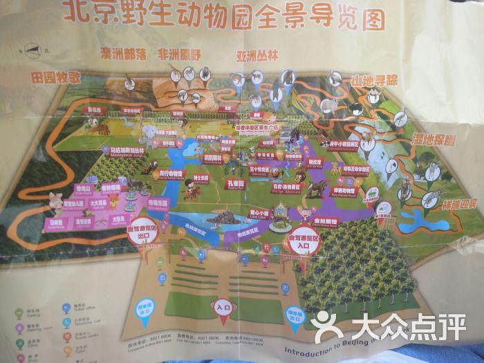 北京野生动物园图片 - 第1张