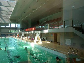 東麗游泳中心