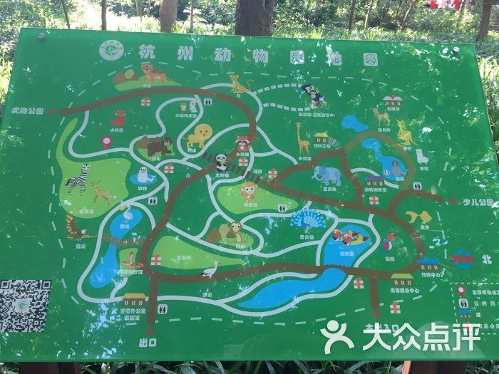 杭州动物园图片 - 第5张