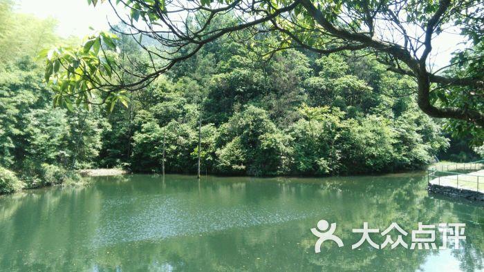 野鹤湫风景区-图片-宁海周边游-大众点评网