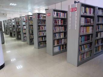 清新图书馆