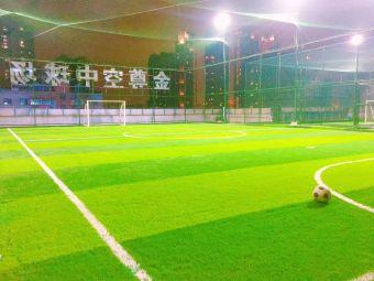 金尊体育空中球场