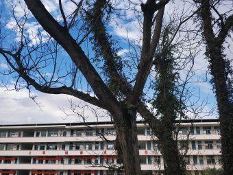 连城第三中学