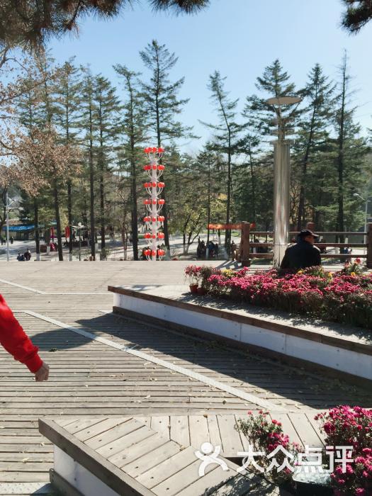 新屯公园-图片-抚顺周边游-大众点评网