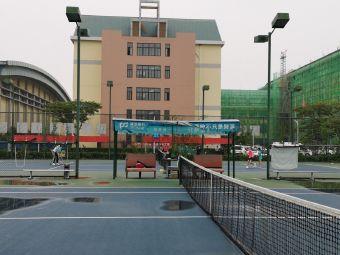 精英网球俱乐部