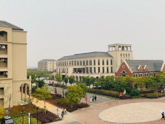 宁波城市学院TAFE学院