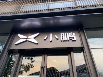 小鹏汽车(南湖天地店)