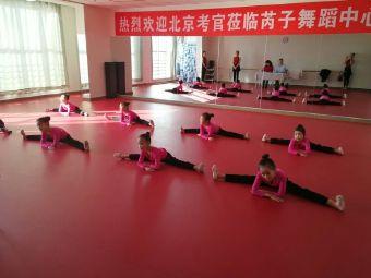 芮子舞蹈学校