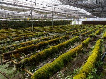 济生农业科技有限公司