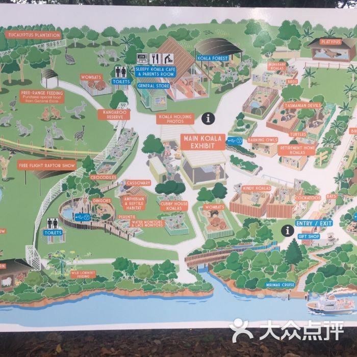 龙柏考拉动物园图片-北京公园-大众点评网