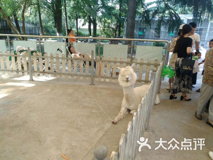 南通动物园图片 - 第1张