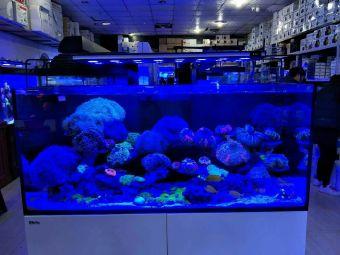 新海湾水族馆