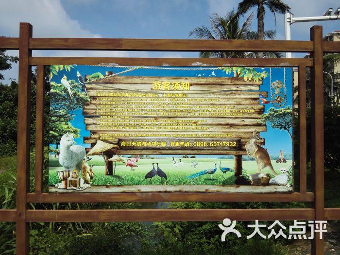 海口天鹅湖动物乐园的点评