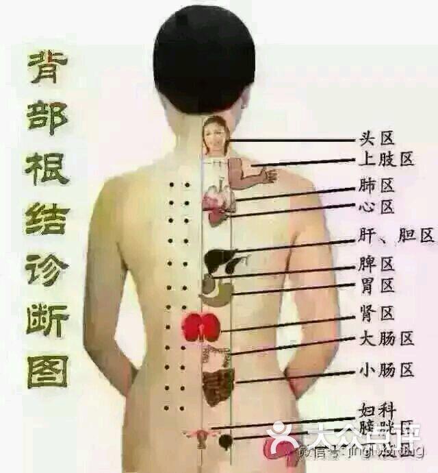 专业上门男经络spa师:上传的图片