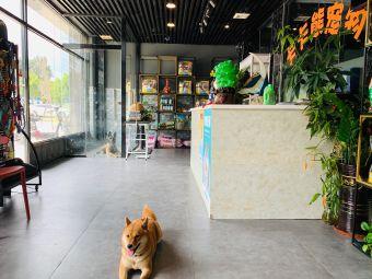卡卡熊宠物生活馆