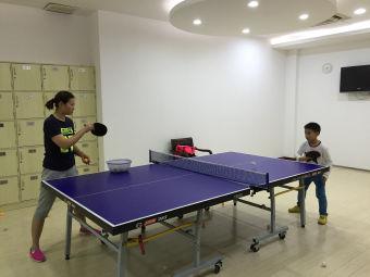 體育館乒乓球館(八萬人體育場館)