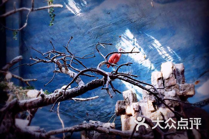 北京动物园图片 - 第48张
