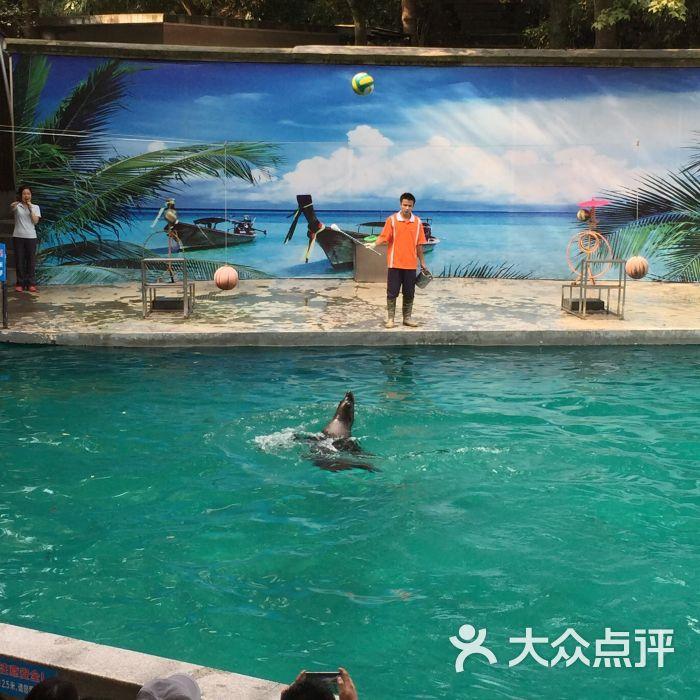 杭州动物园图片 - 第1715张