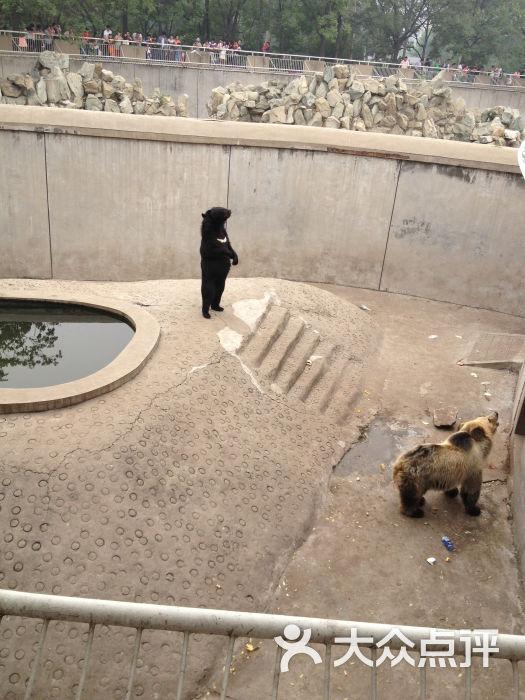 南开区 南开大学 动植物园 动物园 天津动物园 所有点评  人均 ¥30