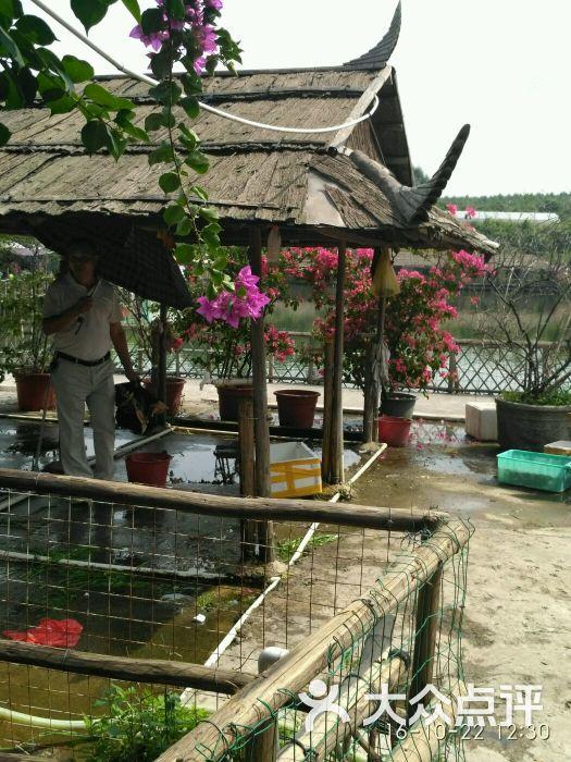 怡景生态园-图片-南宁美食-大众点评网
