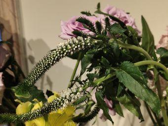 春晓花意E·Floral