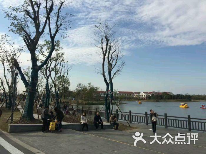 长兴岛郊野公园-图片-崇明县周边游-大众点评网