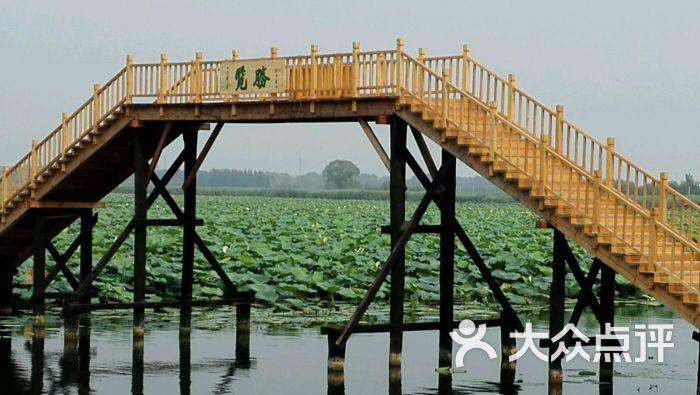 白洋淀王家寨水乡民俗村望月岛览胜桥图片 - 第1张