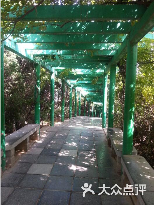 骊山森林公园的点评
