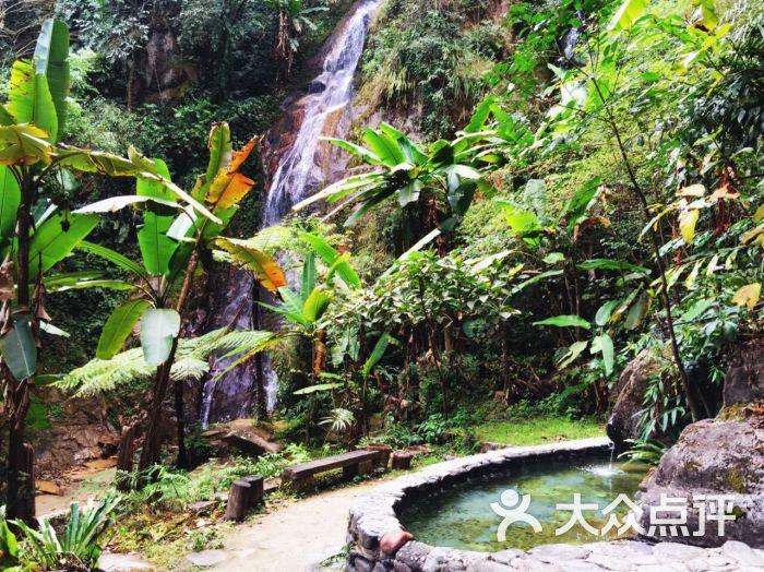 樱花谷森林温泉风景区图片 - 第1张