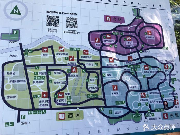 北京动物园图片 - 第3942张