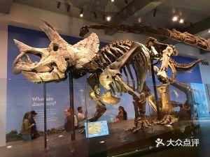 洛杉磯自然歷史博物館