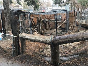 大熊湖動物園