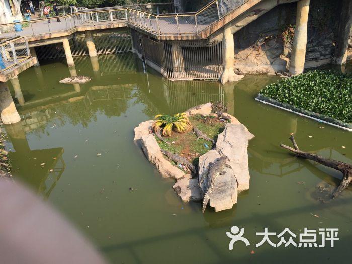 南昌新动物园图片 - 第189张