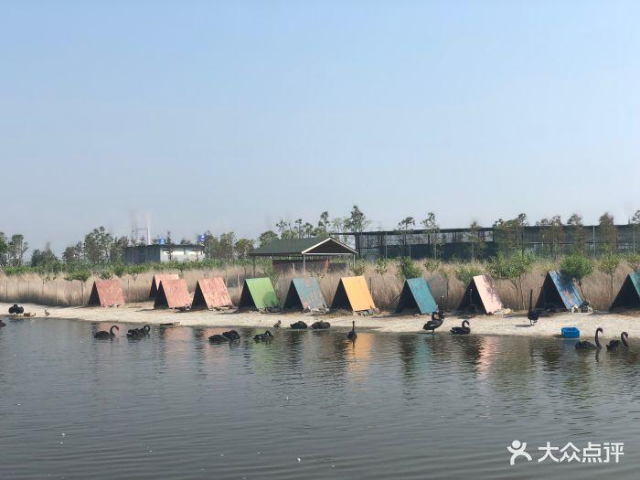 台州湾野生动物园图片 - 第12张