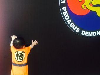 崇武国际跆拳道