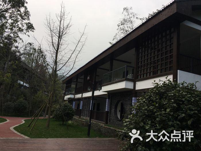 雅安碧峰峡萌趣东方动物主题酒店图片 - 第2张