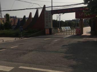 桑营镇中心学校