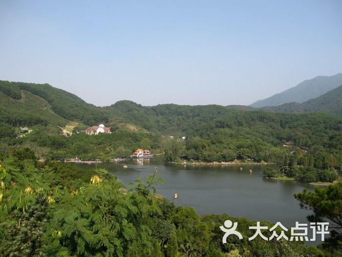 仙湖植物园 俯视图片 深圳景点