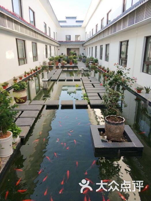 海上花岛生态度假酒店图片 - 第4张