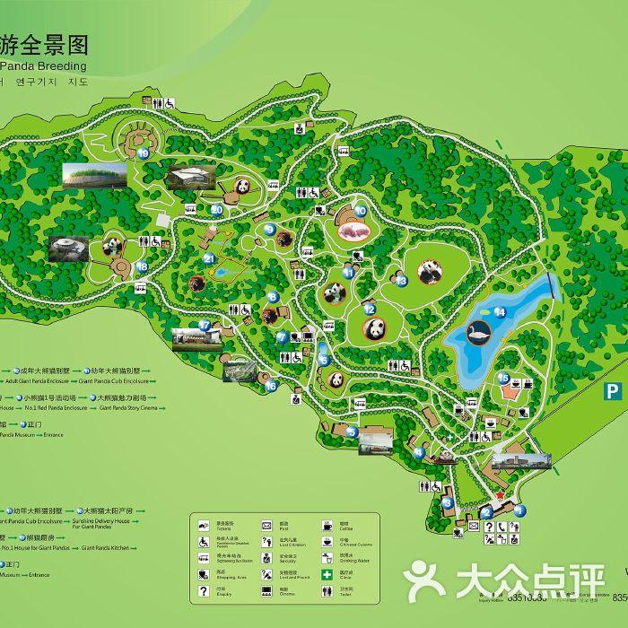 大熊猫繁育研究基地图片-北京动物园-大众点评网