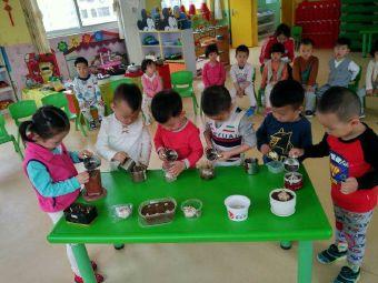 花园宝宝幼儿园