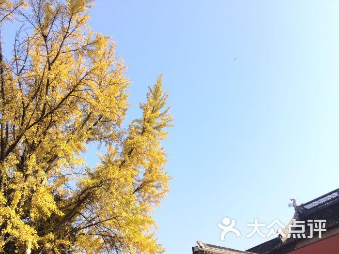 栖霞山名胜风景区图片 - 第3张