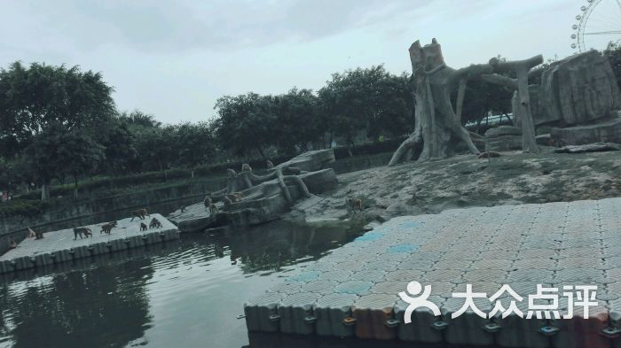 东莞寮步香市动物园图片 - 第268张