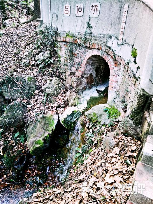 惠山国家森林公园图片 - 第17张