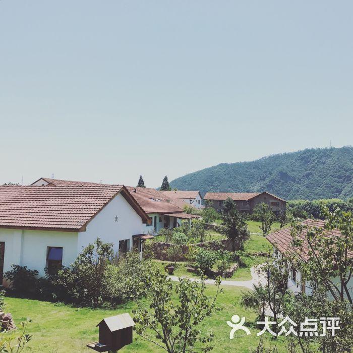 西坡千岛湖酒店图片-北京五星级酒店-大众点评网