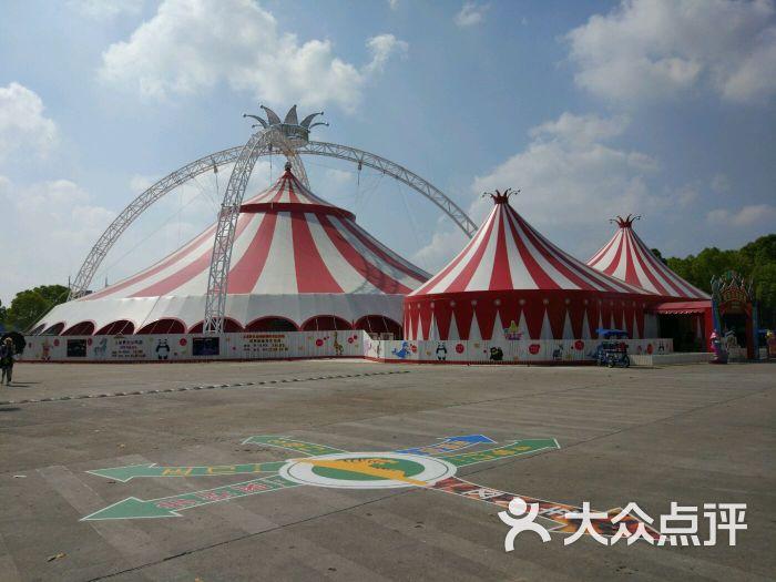 上海野生动物园俄罗斯马戏团图片 - 第70张