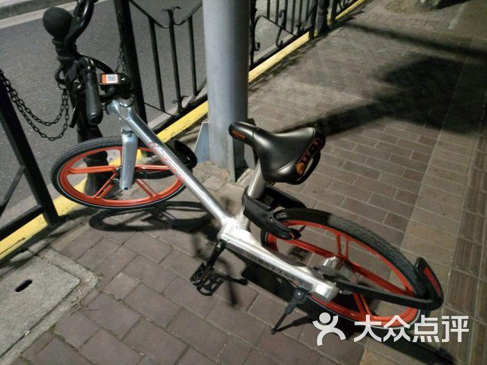 摩拜单车--环境图片-上海生活服务-大众点评