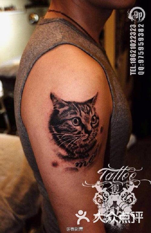 tattoo御刺青纹身店(虹桥店)猫咪图片 - 第66张