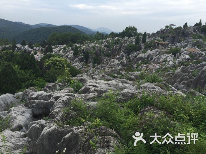芜湖丫山风景区-图片-南陵县周边游-大众点评网